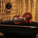 Investovat do houslí z roku 1796 mohou Češi nyní online a jako první v Evropě.